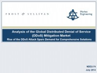 Analysis of the Global Distributed Denial of Service (DDoS) Mitigation Market
