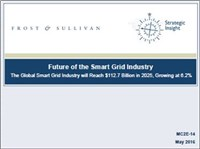 Future of the Smart Grid Industry