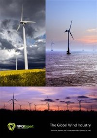 The Global Wind Industry