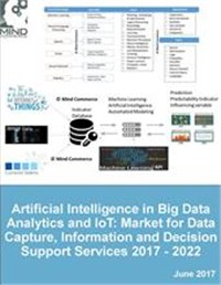 Artificial Intelligence in Big Data Analytics and IoT: Market for Data Capture, Information and Decision Support Services 2017 - 2022