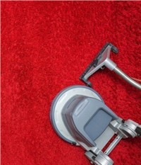 Carpet Cleaner Market - Global Outlook and Forecast 2019-2024
