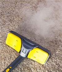 Steam Cleaners Market - Global Outlook and Forecast 2019-2024