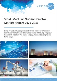 Small Modular Nuclear Reactor Market Report 2020-2030