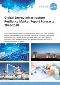 Global Energy Infrastructure Resilience Market Forecast 2020-2030