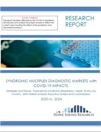 Syndromic Multiplex Diagnostic Markets With Covid-19 Impact. Strategies and Trends.  Forecasts by Syndrome (respiratory, Sepsis, Gi Etc.) by Country.  With Market Analysis, Executive Guides and Customization. 2020 to 2024