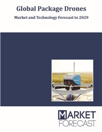 Global Package Drones - Market and Technology Forecast to 2029