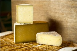 Cheese Ingredients Market worth 93.34 Bn USD by 2020, According to a New Study on ASDReports