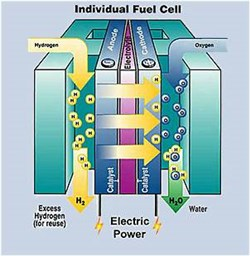 The Key Players in Global Direct Methanol Fuel Cell Market 2016-2020