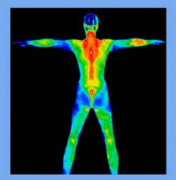 Infrared and Thermal Imaging Systems Market Worth $5,219.2 Million by 2019, According to a New Study on ASDReports