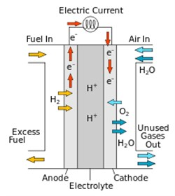 The Key Players in Global Stationary Fuel Cell Market 2018-2022
