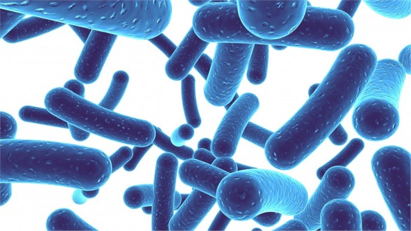 Global Probiotics market set to grow to $59bn by 2022