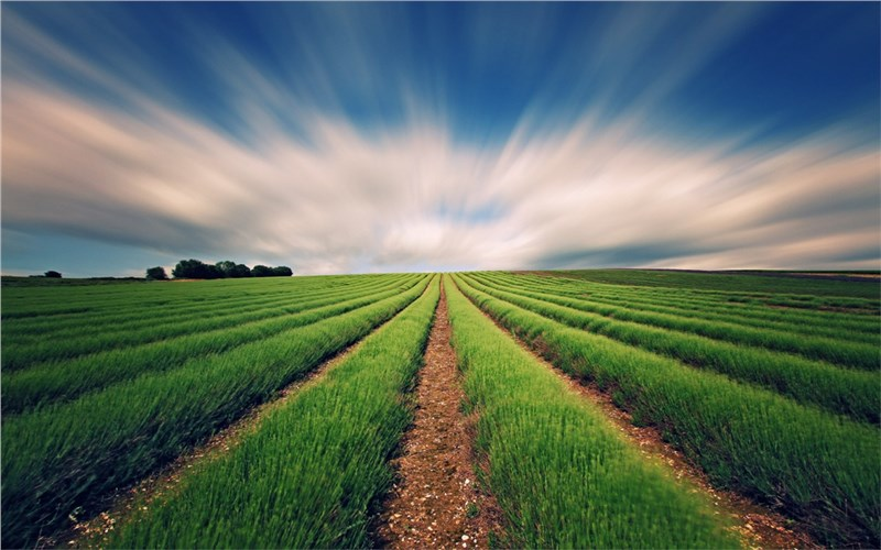 Agriculture Analytics Market worth $1,236 M by 2023