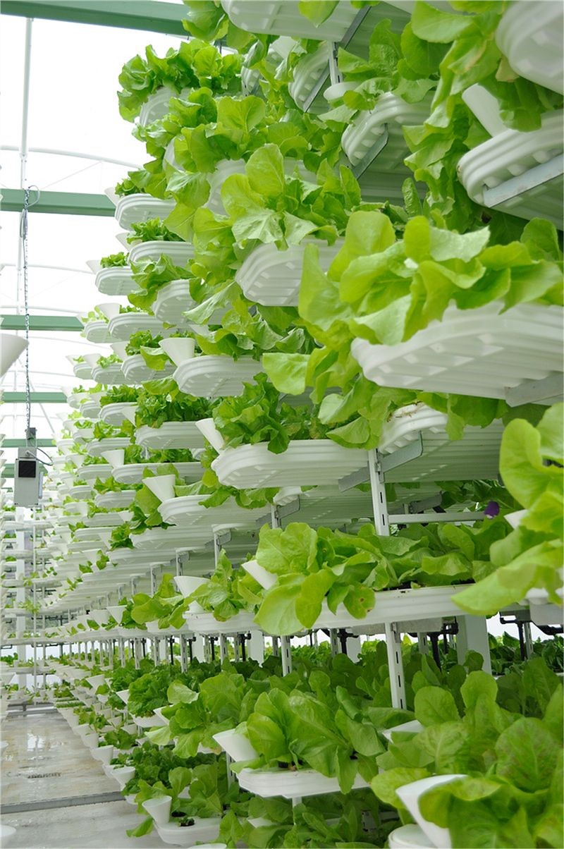 Global Indoor Farming Technology Market is Projected to Reach $12.02 Bn by 2024