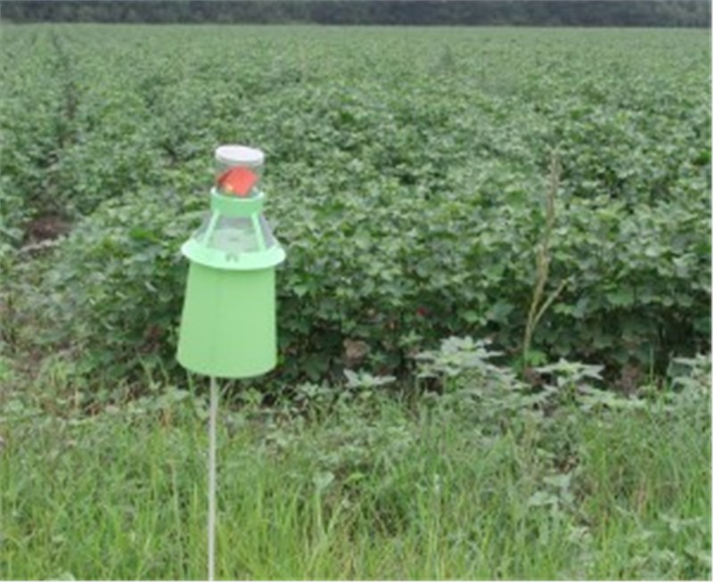 Global Agricultural Pheromones Market Anticipated to Reach $780.3 M by 2024