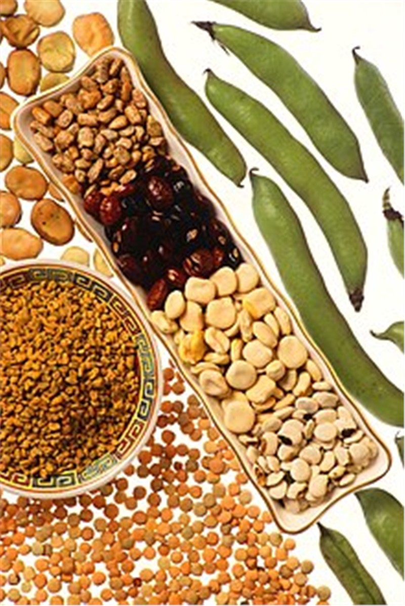 Seed Processing Market worth $16.6 billion by 2025