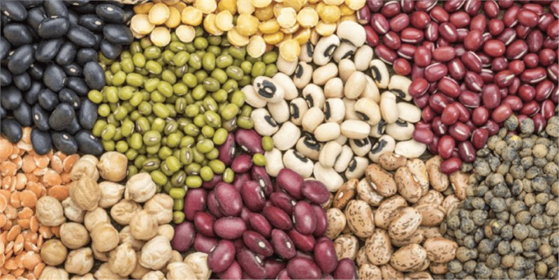 Seed Market worth $80.9 billion by 2025